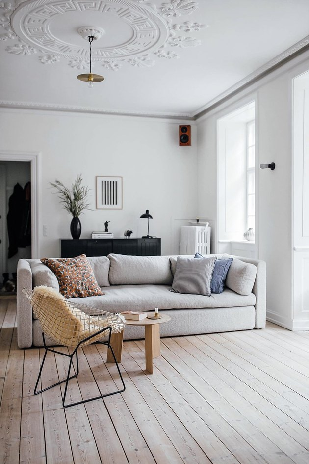Scandinavian living room with sofa and lounge chair