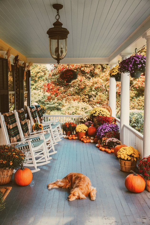 fall porch decor with rocking chairs and sleeping puppy
