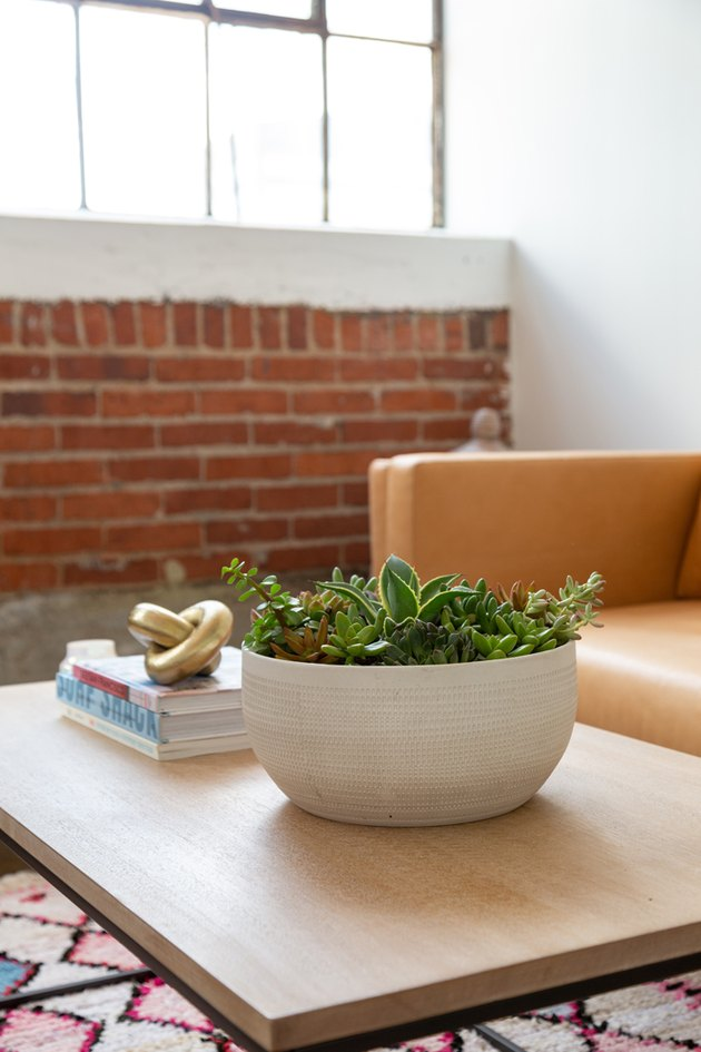Succulent Shallow Bowl Planter DIY