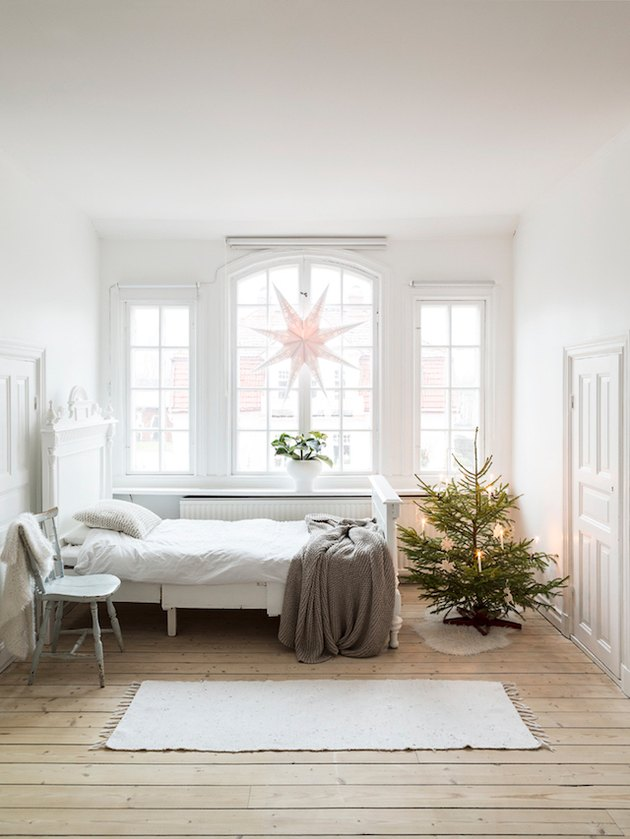 A sunny bedroom with a small tree