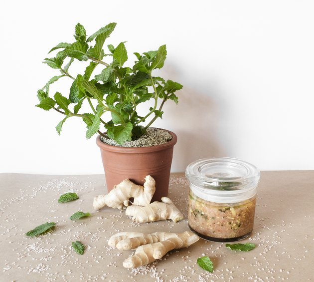 DIY mint and ginger body scrub