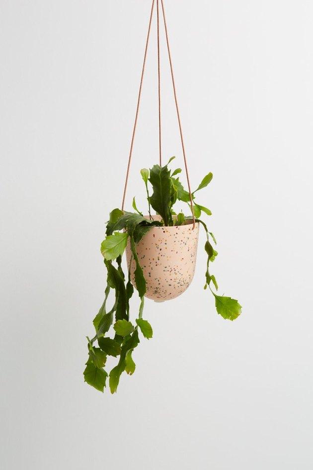 Capra Designs Hanging Terrazzo Planter, $59
