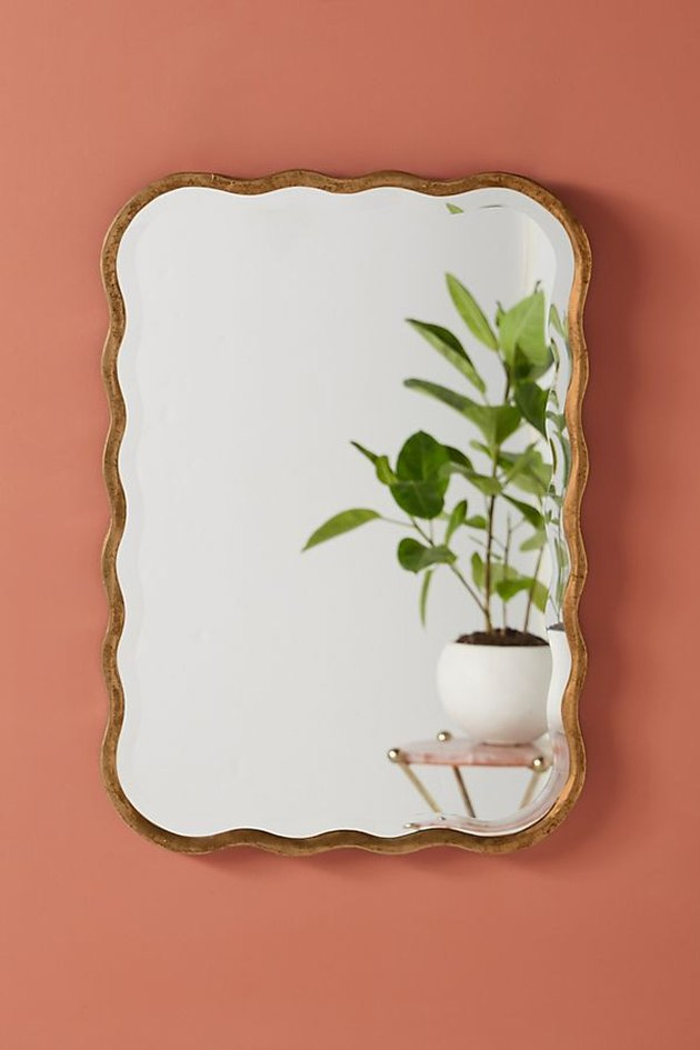 wavy mirror with plant reflected
