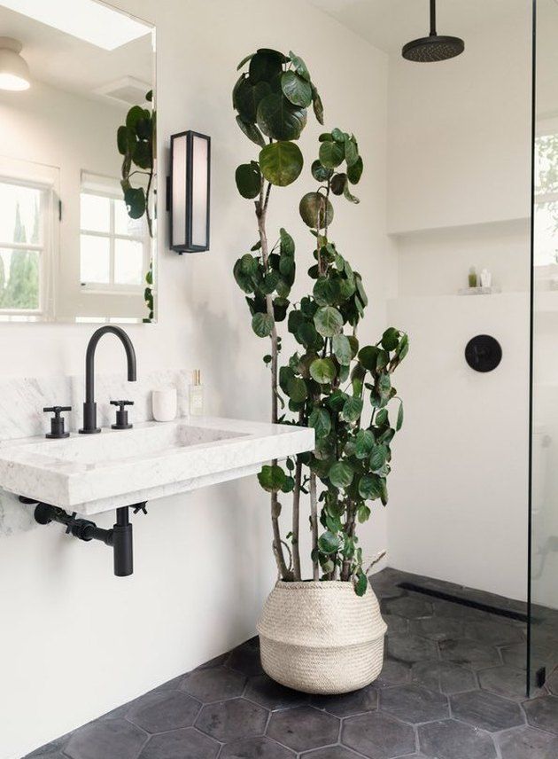 spa like bathroom with open shower and plants