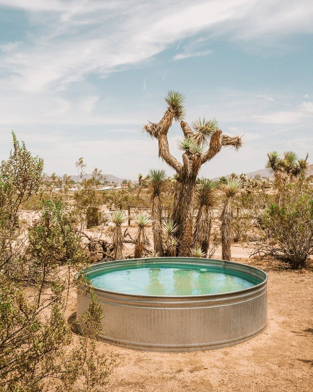 round stock tank pool in the desert near cacti