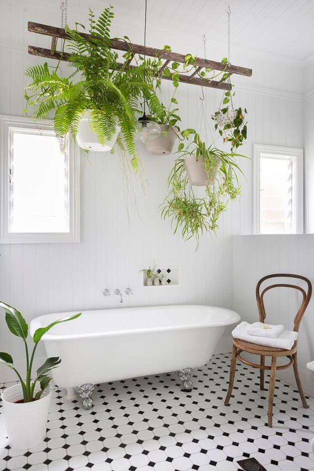 Scandinavian bathroom with clawfoot bathtub and hanging plants