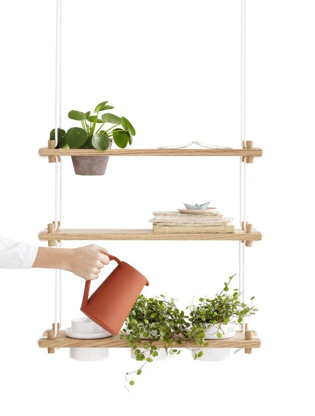 shelving system with plants and person watering a plant