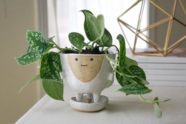 planter with face painted outside and plant inside