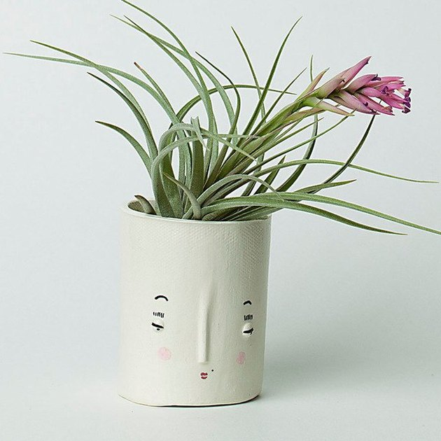 handmade white ceramic planter with face motif
