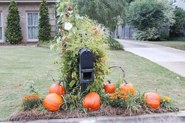 A fake pumpkin patch around a mailbox