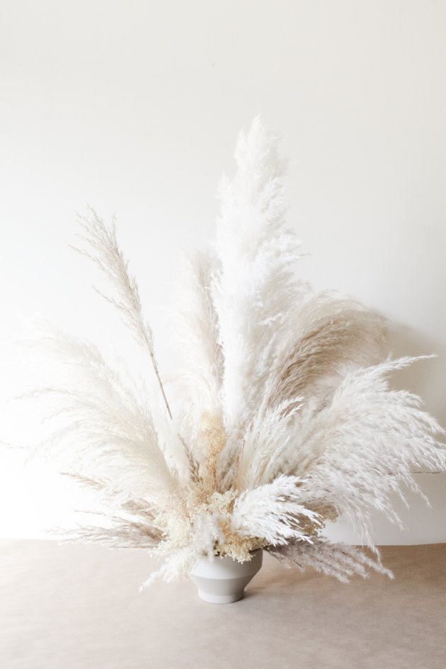 white and off-white pampas grass bouquet on a neutral backdrop