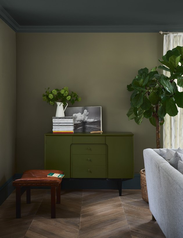 "Farrow & Ball - ""Treron"""