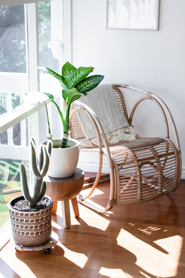 Plants by a rattan chair near a large window with natural light