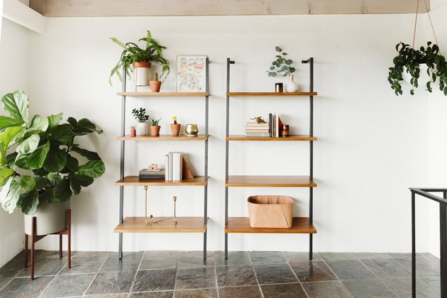 Bookcases with plants