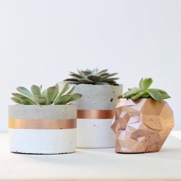 rose gold skull planter