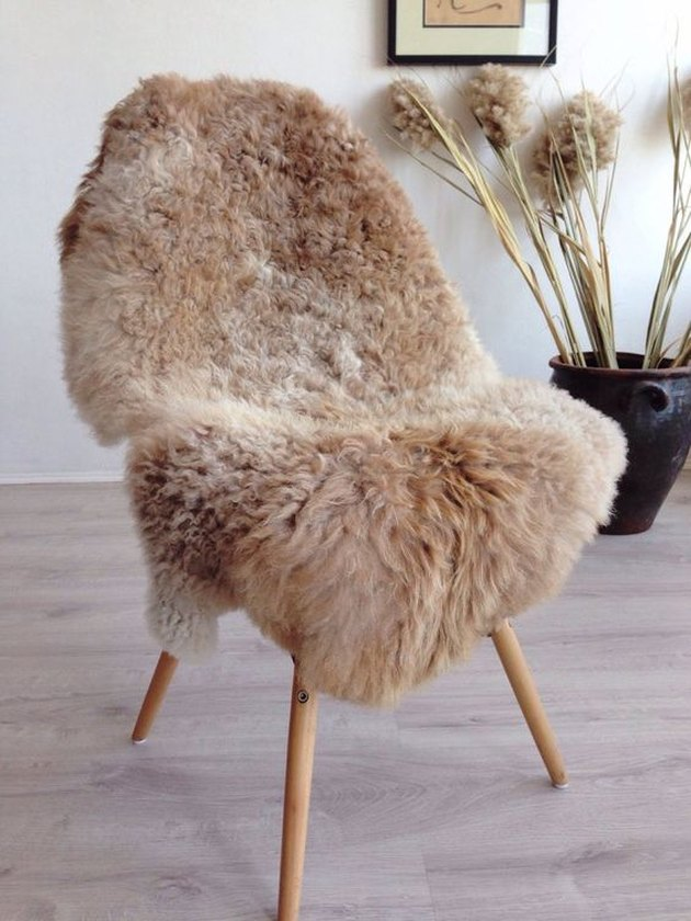 curly autumn-colored sheepskin