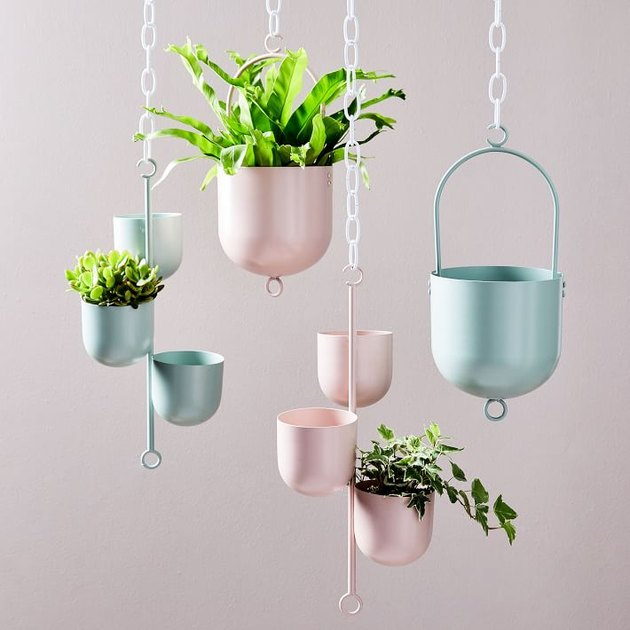 pink and blue hanging planters