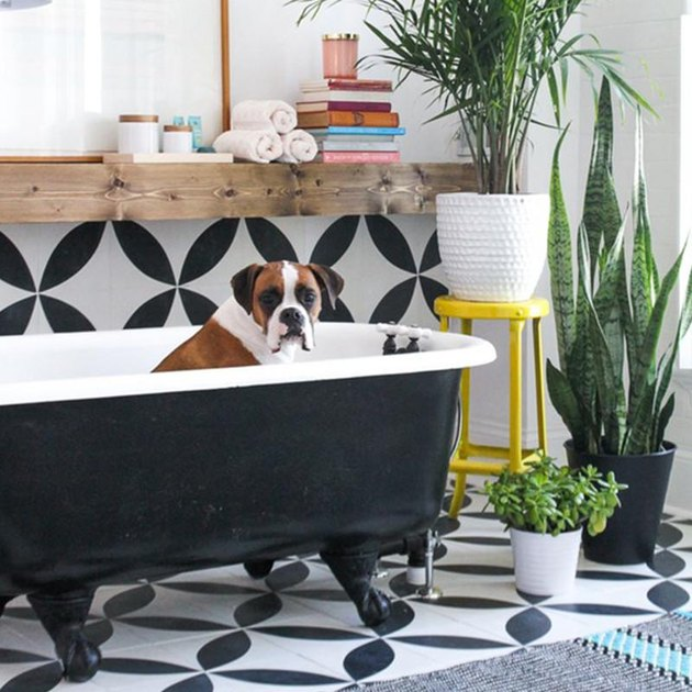 Large tiled circles behind a clawfoot tub
