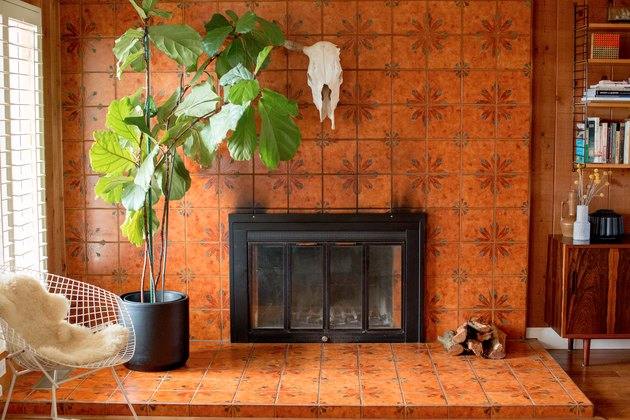 Orange tiled fireplace with large fiddle leaf fig tree
