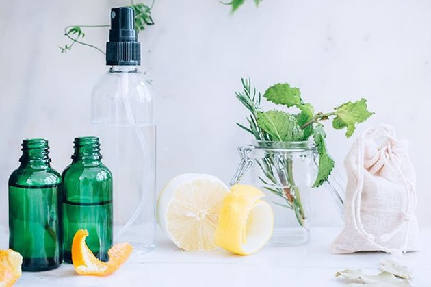 Natural cleaning solutions to combat bugs in the kitchen