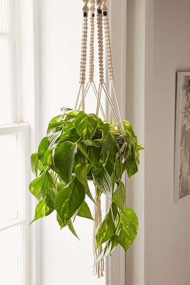 Macrame hanging planter with beaded accents