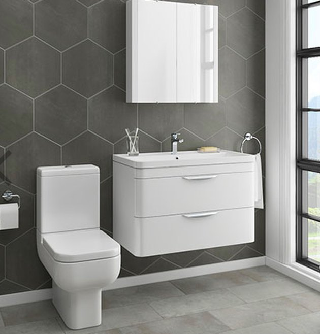 Contemporary design toilet and vanity.