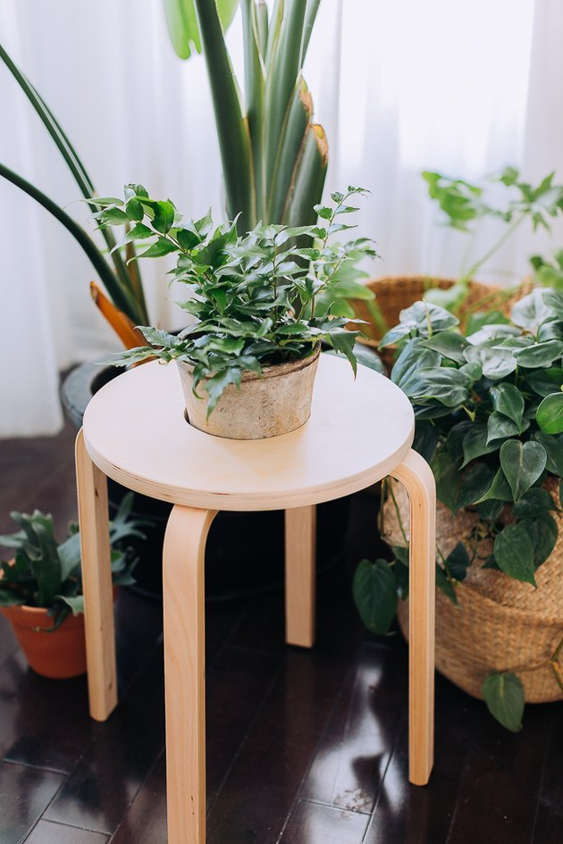 IKEA stool planter