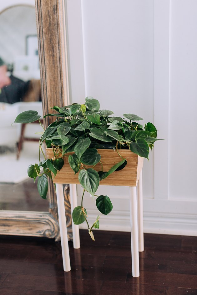 DIY box planter
