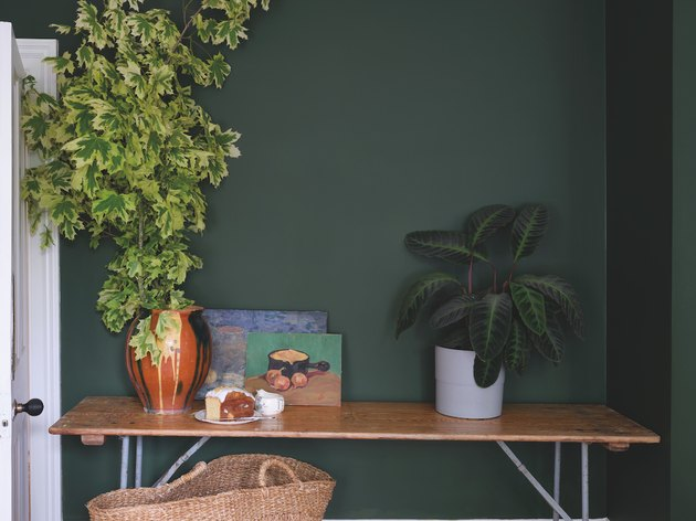 green wall with table and plants