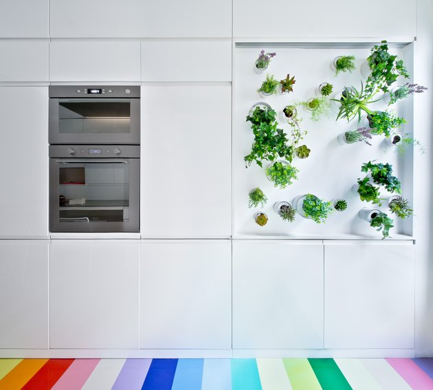 modern white kitchen with hydroponic vertical garden and rainbow floor