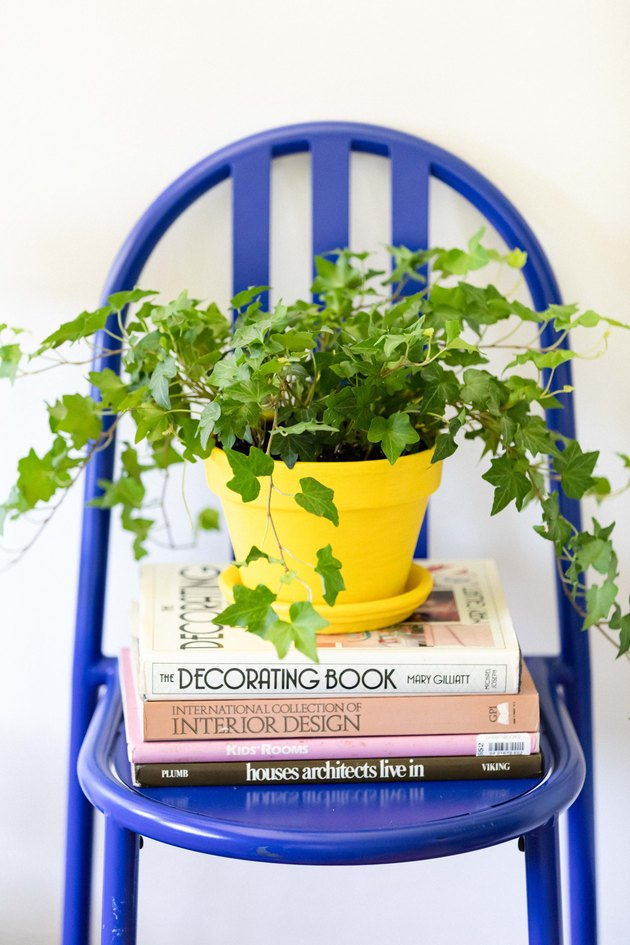 Blue chair with yellow pot and green plant