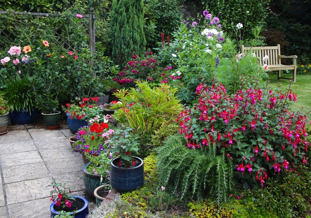 Bright flowers in English garden with patio pots & flowerbeds.