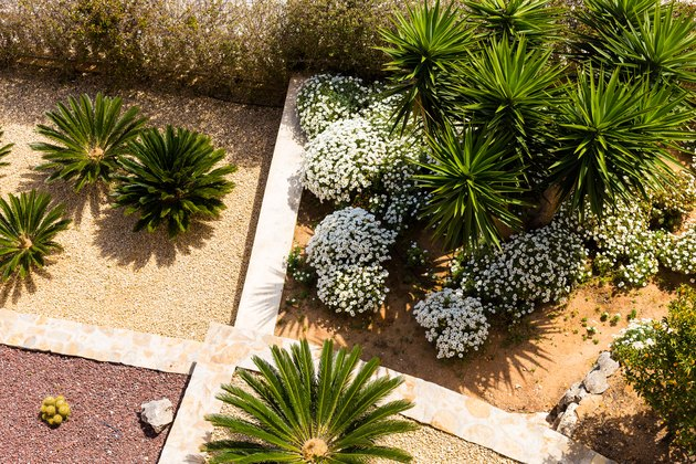 Landscape design with palm trees and flowers. Top view of the modern garden design with a terrace.
