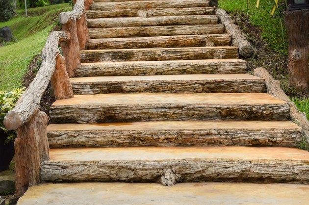stair in nature garden