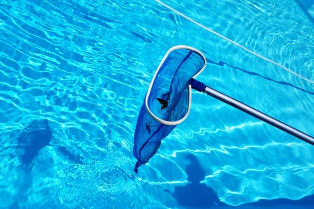 A pool skimmer.