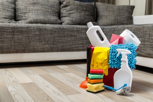 Cleaning service. Sponges, chemicals and plunger.