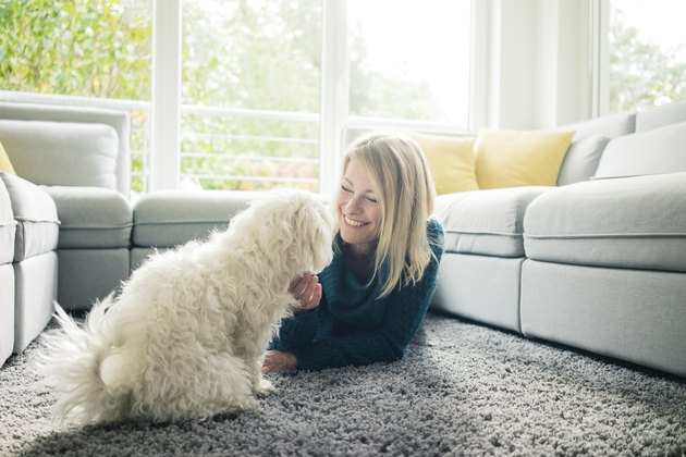 Smiling woman petting her dog in living room