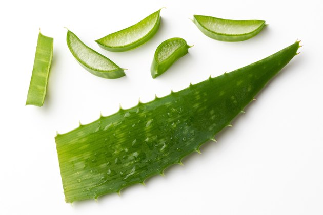 Whole and sliced aloe vera leaf on a white background