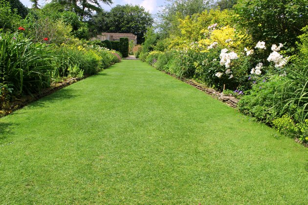 Image of ornamental flower garden with lawn pathway, herbaceous plants