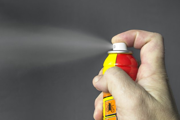 Aerosol for the control of insects.