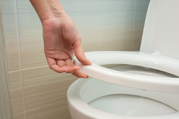 Hand down or raise the toilet seat