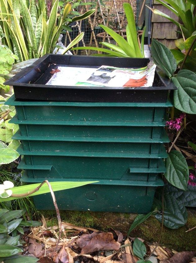 Worm composting bins.