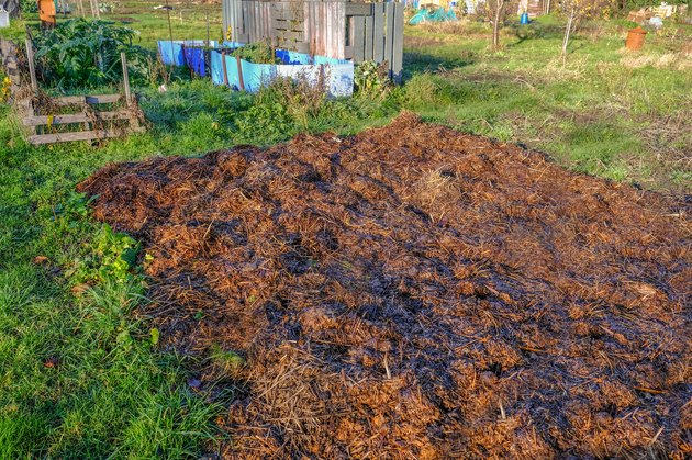 Manure heap in the allotment garden.