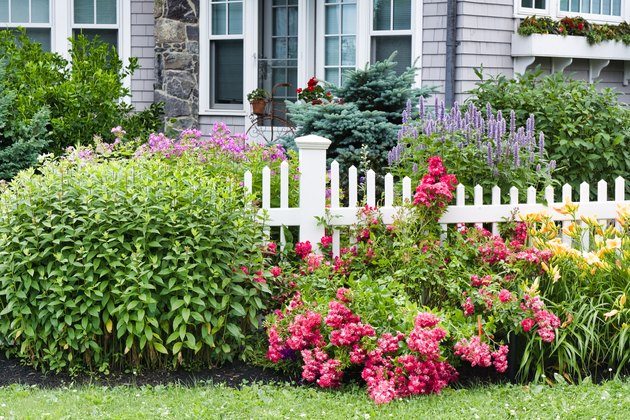 Garden and white picket fence with New England style house in background