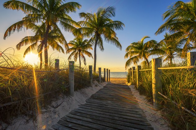 Passage to the beach at sunrise