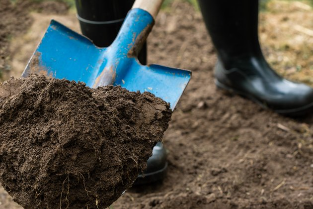 Worker digs the black soil with shovel  in the garden