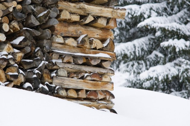 How to Get Rid of Mold on Firewood