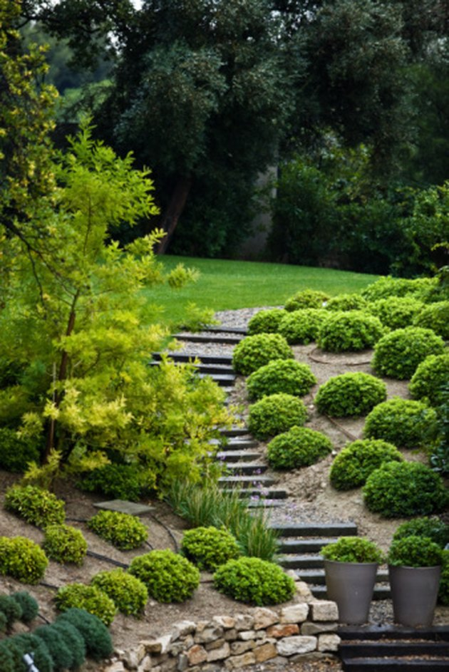 How to Landscape a Sloped Lot
