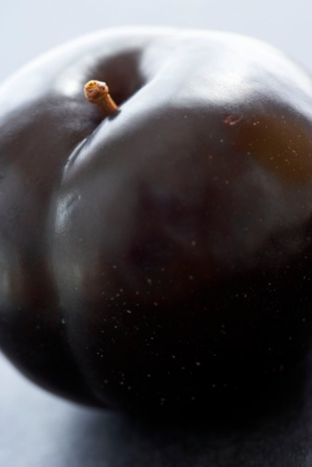 Do Purple Plums Belong to the Citrus Fruit Family?
