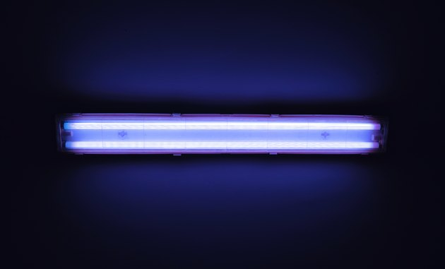 Detail shot of a fluorescent light tube on a wall.